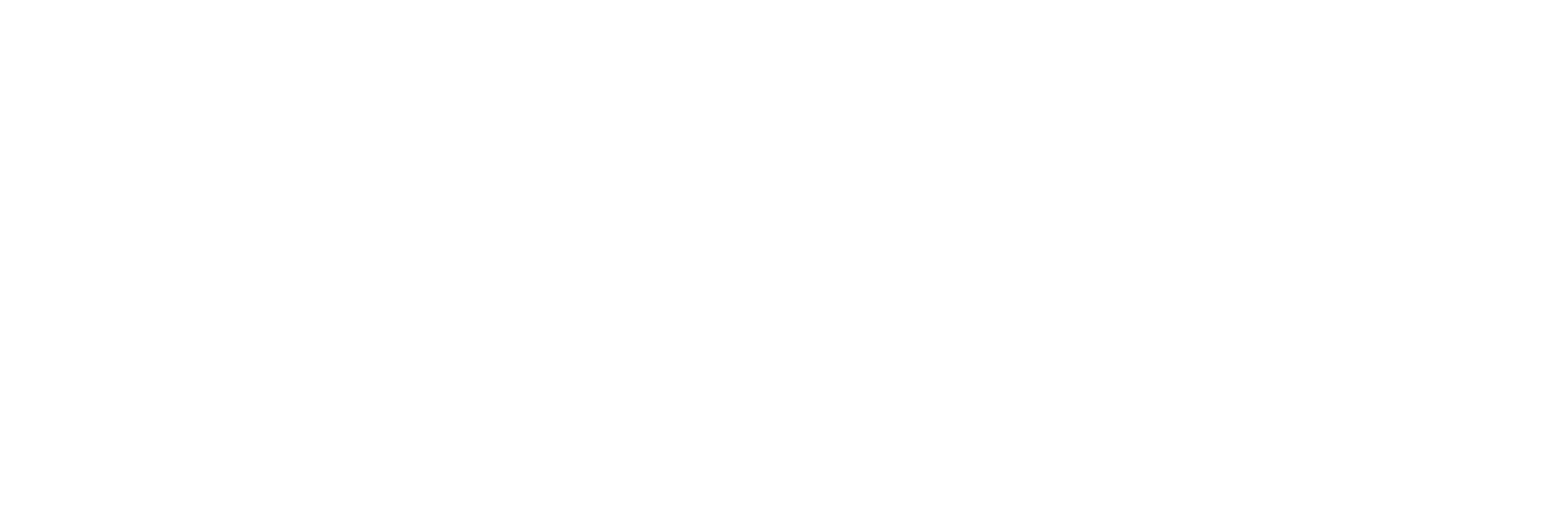 Sally Wolf Photography